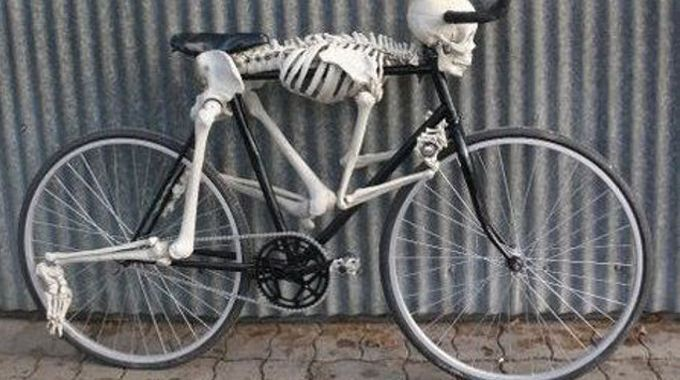 bicycle dinosaur for halloween