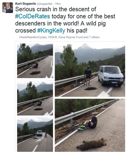 Sean Kelly crash