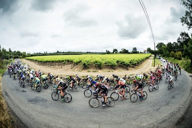 UCI team size 2017