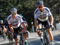 Juraj Sagan and Peter Sagan