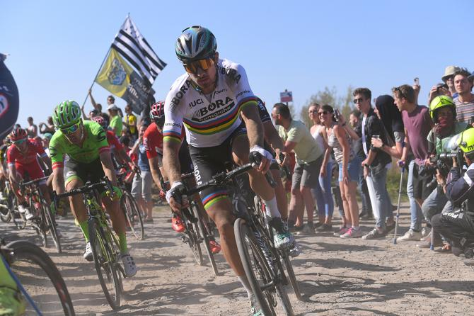Peter Sagan paris roubaix