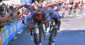 NIBALI AND JUNGELS
