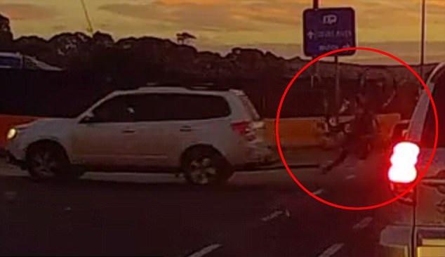 cyclist vs driver