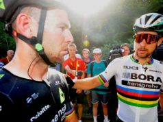 Cavendish Sagan crash tour de france 2017