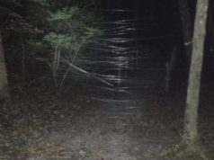Elizabethtown fishing line trap mtb trail