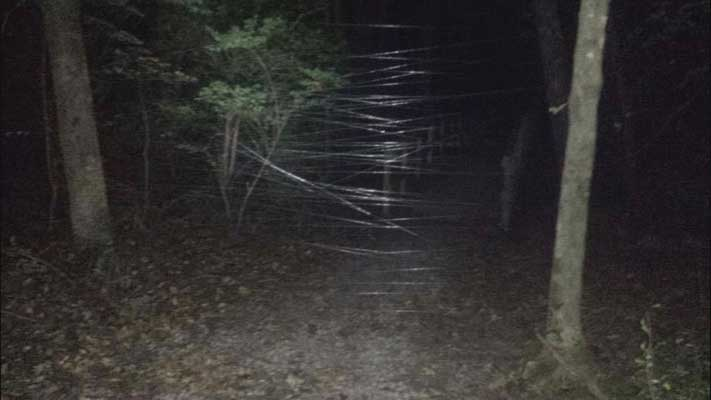 Elizabethtown fishing line trap mtb trail