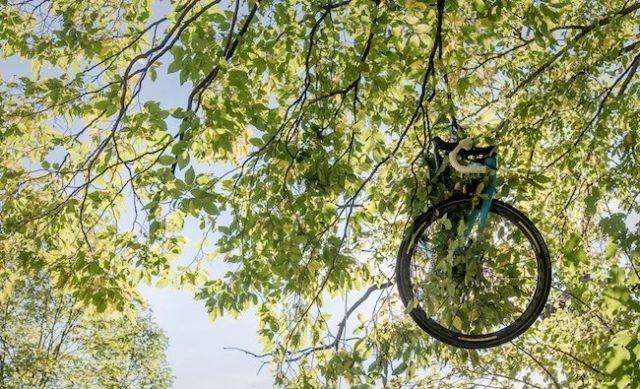 jan bakelants bike in tree il lombardia 2017