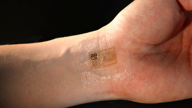 microchips athletes