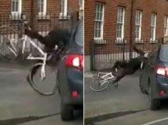 cyclist sent flying policeman car dublin