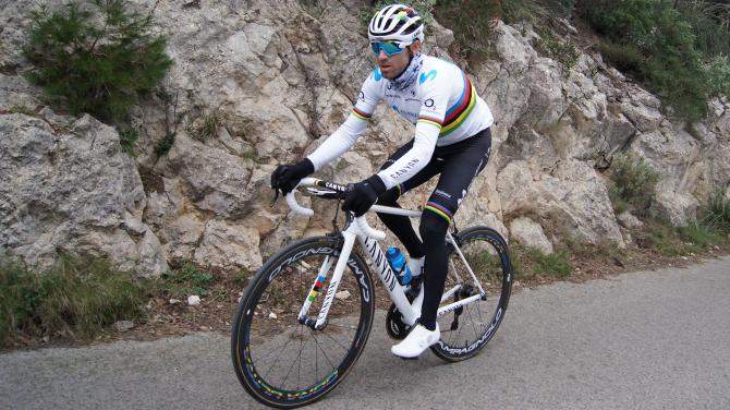 Alejandro Valverde Fizik shoes world champion